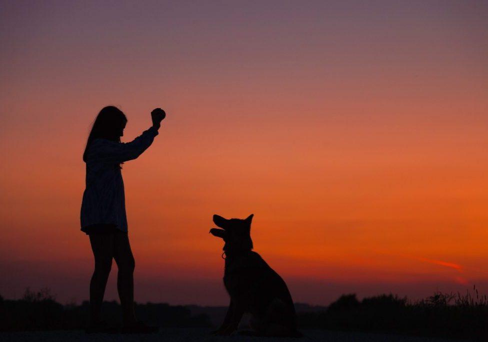 Woman + Dog + Ball
